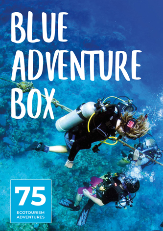 Blue Adventure Box