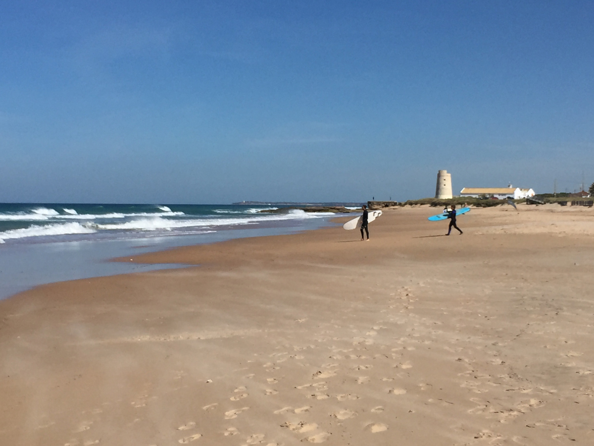 El Palmar Beach (Andalusia, Spain)