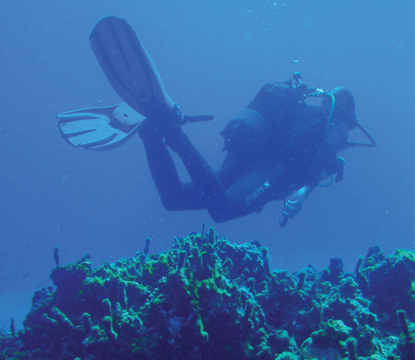 Gift Voucher - Diving Baptism in Medes Islands (Spain)