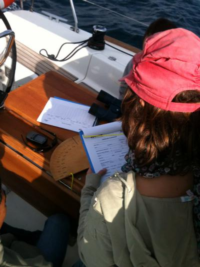 Join a cetacean research crew in Cap de Creus