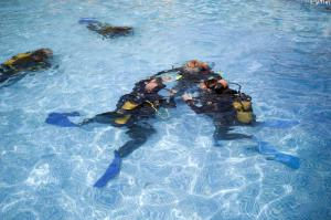 4-Day Open Water Diver Course