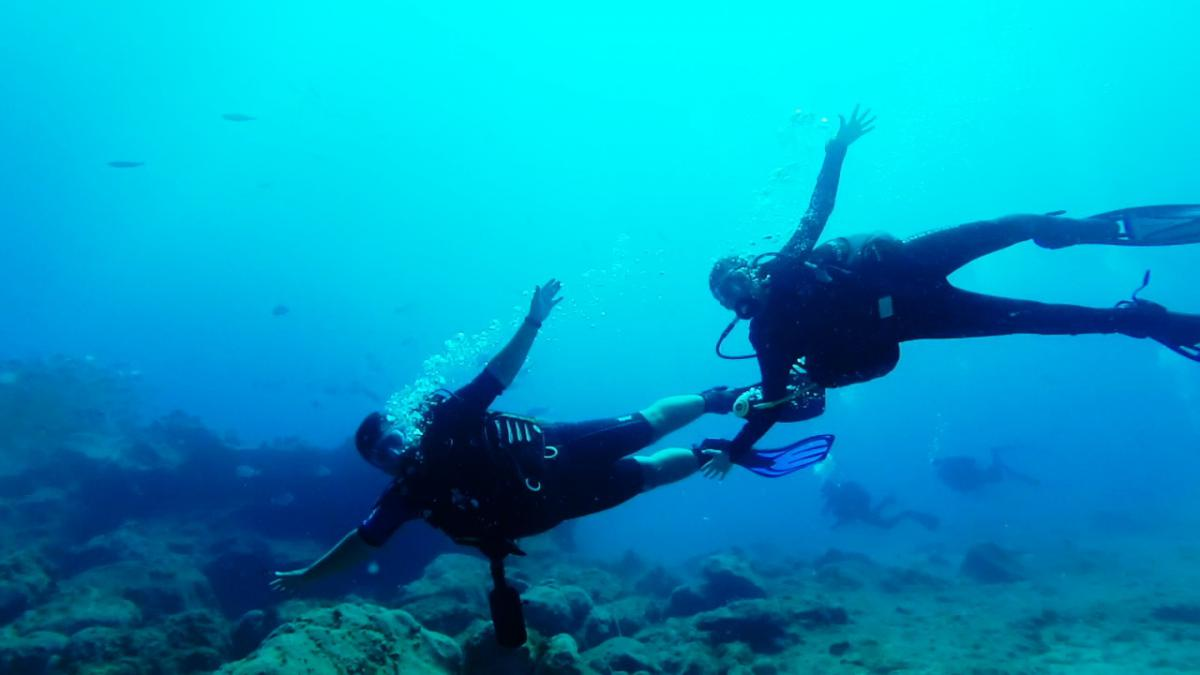 Discover Scuba Diving in Tenerife (Canary Islands, Spain)