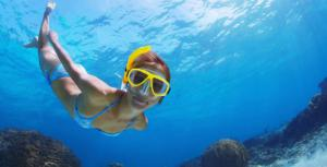Guided Snorkeling Tour in Tenerife