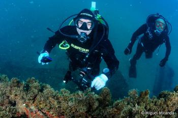 Learn to Dive in Atlantic Europe