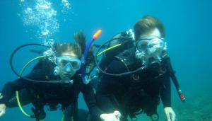 Become an open water diver in Umag!