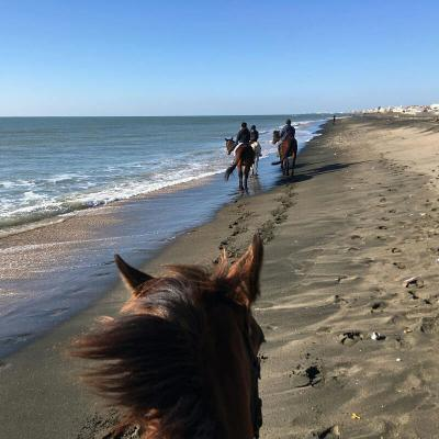 Beach ride in Rome (Lazio, Italy)