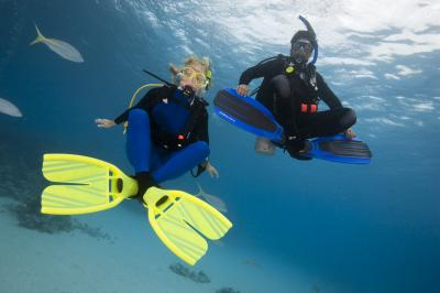 PADI Open Water Course in Gran Canaria (Canary Islands, Spain)